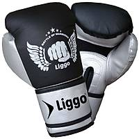 Boks Eldiveni Muay Thai Kick Boks Eldiveni Liggo Power Silver