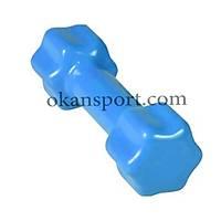 3 Kg PVC Vinly Dambýl Açýk Mavi