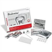 Septodont Biodentine - 5x1 Kapsül Bioaktif Dentin Tamir Materyali