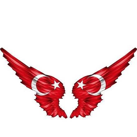 Kanatlý Türkiye Sticker