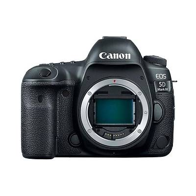 CANON EOS 5D MK IV(WG) EF24-105 L IS