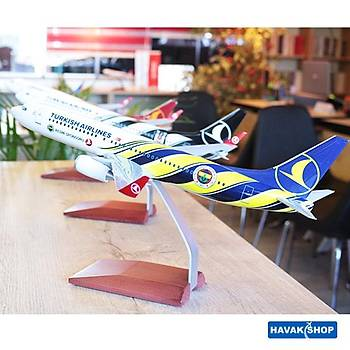 Fenerbahçe Maket Uçak B737 800 1/100 TK Collection