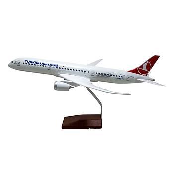 THY 787-9 Dreamliner