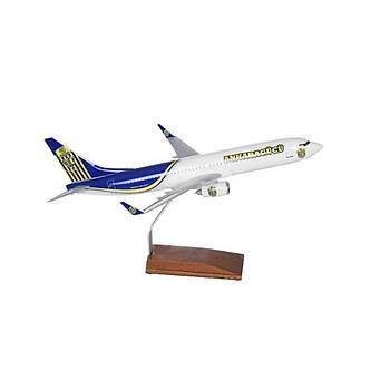 Ankaragücü Maket Uçak B737 800 1/100