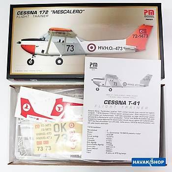 Cessna 172 Flight Trainer ''Mescalero''