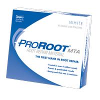 Dentsply Pro Root MTA White 10 Hastalýk Set