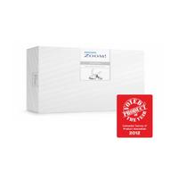 Philips Zoom DayWhite Ev Tipi Beyazlatma Sistemi