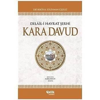 Kara Davud & Delaili Hayrat Þerhi