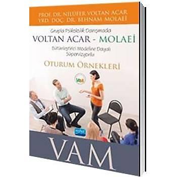 Grupla Psikolojik Danýþmada VOLTAN ACAR-MOLAEÝ (VAM) Bütünleþtirici Modeline Dayalý Süpervizyonlu Oturum Örnekleri