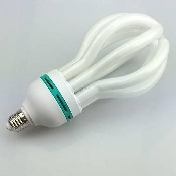 105 Watt Tasarruflu EcoShine Ampül