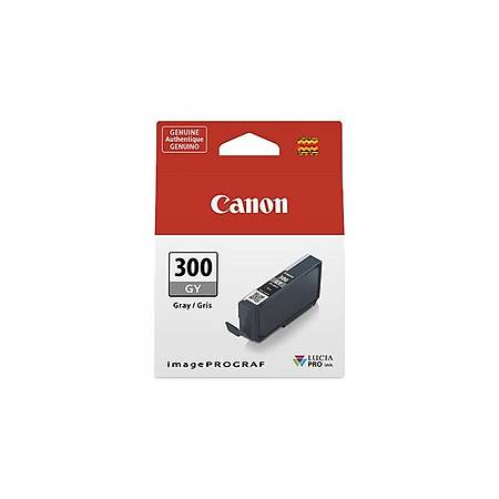 Canon PFI-300 GY EUR/OCN 4200C001