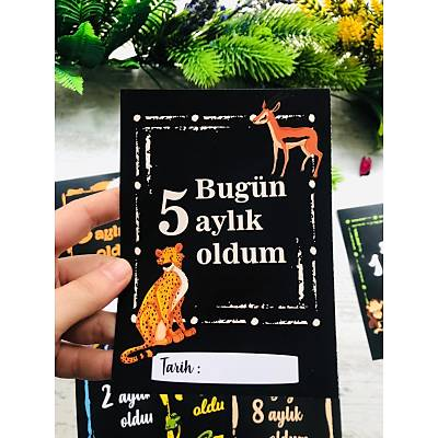 Þirin Hayvanlar Temalý 12'li Ay Kartlarý