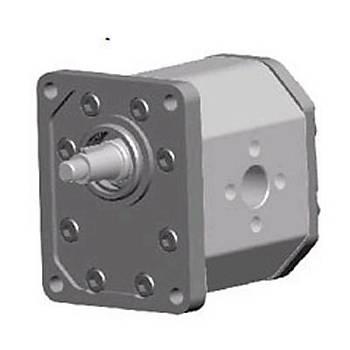 BHP3-B1-D-20 GR 3 Serisi Standart Pompa (ÇELÝK KAPAK)