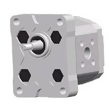 BKP1B0-D1,1 GR 1 Serisi Standart Pompa (ALÜMÝNYUM KAPAK)