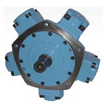 IAM 1250 - H4 Radyal Pistonlu Motor