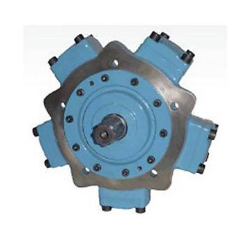 IAM 250 - H2 Radyal Pistonlu Motor