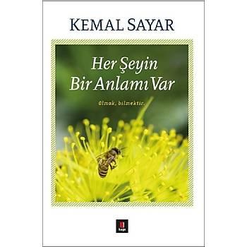 Her Þeyin Bir Anlamý Var - Kemal Sayar - Kapý Yayýnlarý