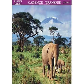 Cadence T-947 25 X 35 cm Kolay Transfer