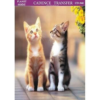 Cadence T-948 25 X 35 cm Kolay Transfer