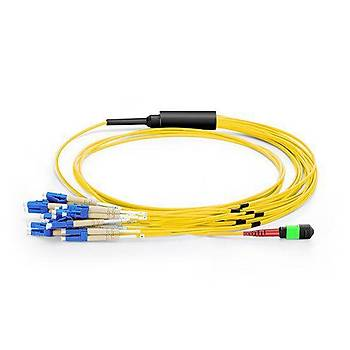 MTP to 12xLC Duplex 24 Fiber OS2 Singlemode Patch Cord