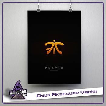 CS:GO Fnatic: Poster