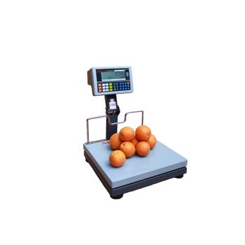 Arester RF-LCD 40x40 150 KG Boynu Katlanýr Fiyat Hesaplamalý Baskül