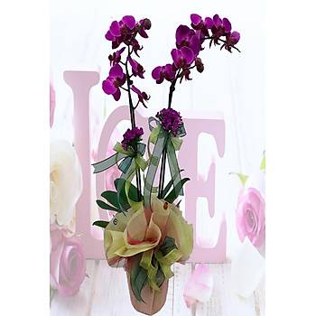 Çiçek Süslemeli Çift Dal Pembe