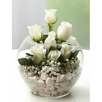 Sevgiliye Özel Fanusta Beyaz Güller