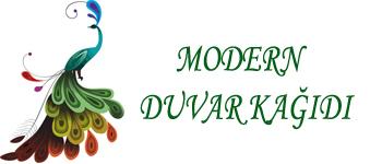 modernduvarkagidi.com