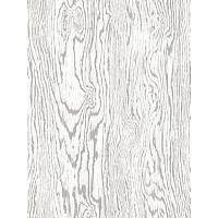 3 DYNAMIC-J650-09 /  5,3 m2