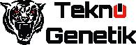 En Ucuz Oyun Bilgisayarları ve Bileşenleri Arayanlara Teknogenetik.com