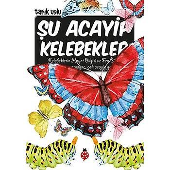 Þu Acayip Kelebekler