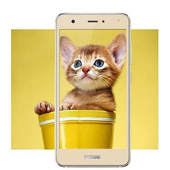 Lito 3D Full Cover Galaxy S7 Edge Cam Ekran Koruyucu Ön / Silver