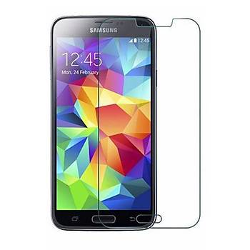 Lito Premium Nano Samsung Galaxy C5 / C5 Pro Ekran Koruyucu Film