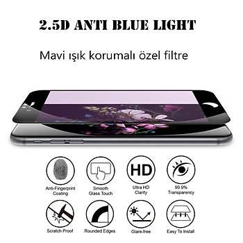 Piili 2.5D Anti Blue Light iPhone X/XS 5,8 Mat Cam Ekran Koruyucu