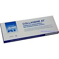 Collagene At Rezorbe Membran 23X23 0,25 Mm / Italya