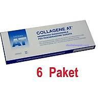 6 Paket Collagene At Rezorbe Membran 22X22Mm / Italya