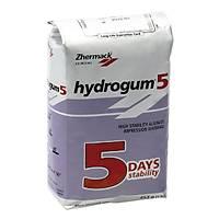Hydrogum 5 Aljinat 10 Adet - Saklama Kabý Hediye