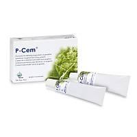 Wp Dental P-Cem Tüp Geçici Yapýþtýrýma Simaný (25gr + 25gr)