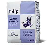 CAVEX Tulip Aljinat