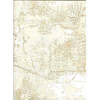 Metropolis Z4006 Eskitme Görünümlü Duvar Kağıdı İtalyan