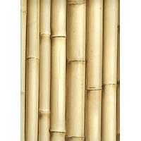 Bluff J223-17 Bambu Görünümlü Duvar Kaðýdý