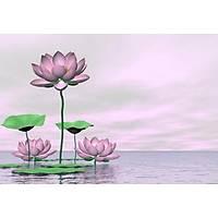 DL 4314 Çiçek Görünümlü Duvar Posteri