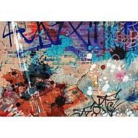 DL 4081 Graffiti Duvar Posteri