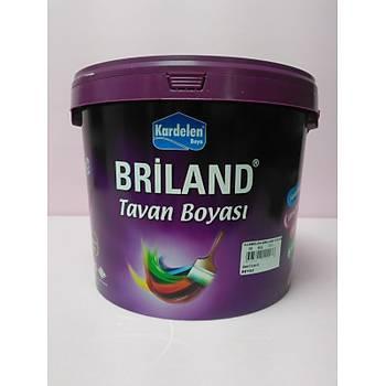 Kardelen Briland Tavan Beyaz 10 kg