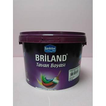 Kardelen Briland Tavan Beyaz 3,5 kg