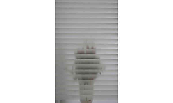Alkor d-c-fix 280-2910 Jaluzi Transparan Cam Vitray Yapýþkanlý Folyo 45cm x 1mt