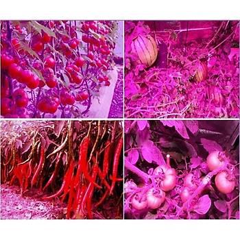 Tam Spektrum 106 Led Bitki Çiçek Büyütme Hidroponik Aydýnlatma