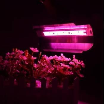 Tam Spektrum 30W 220V COB LED Chip Bitki Büyütme Iþýk Su Geçirmez