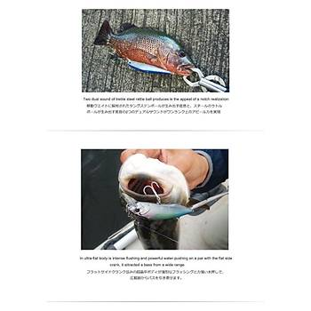 PROFISHER Econglee Japan Eye Sert Yapay Balýk Yem Mavi Simli Renk B